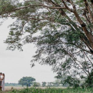 Música Voz e Violão para Casamento Mari e Gu 11
